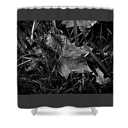 Foliage In The Grass Shower Curtain