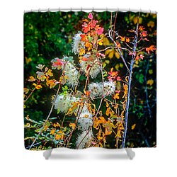 Foliage Twisted Colored Leaves Shower Curtain