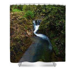 Follow It I Shower Curtain by Yuri Santin
