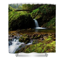 Shower Curtain featuring the photograph Follow It II by Yuri Santin