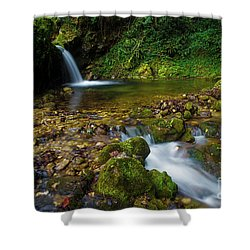 Shower Curtain featuring the photograph Follow It by Yuri Santin