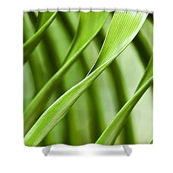 Follow My Lead Shower Curtain by Carolyn Marshall