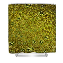Follow The Bouncing Ball Shower Curtain