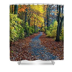 Follow The Path Shower Curtain by Mikki Cucuzzo
