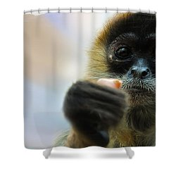 Shower Curtain featuring the photograph Food Sharing by Christine Sponchia
