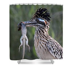Fool In Love Shower Curtain
