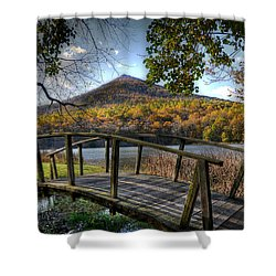 Foot Bridge Shower Curtain by Todd Hostetter