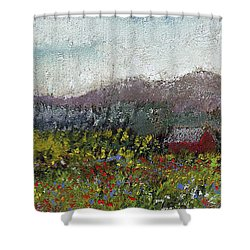 Foothills Meadow Shower Curtain by David Patterson