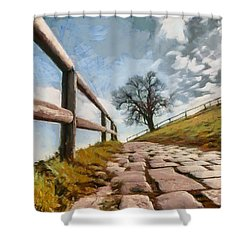 Footpath Shower Curtain by Sergey Simanovsky