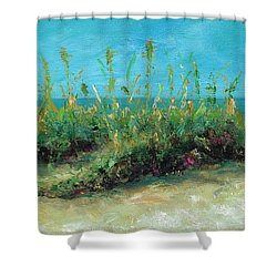 Footprints In The Sand Shower Curtain by Frances Marino