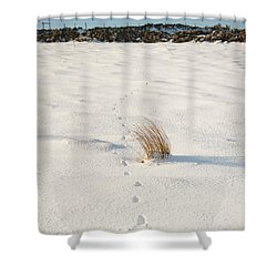 Footprints In The Snow II Shower Curtain