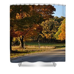 For Grazing Shower Curtain