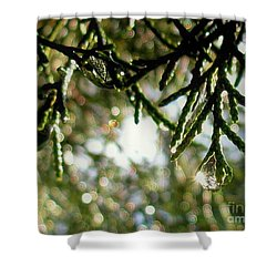 For The Love Of Bokeh 2012 Shower Curtain