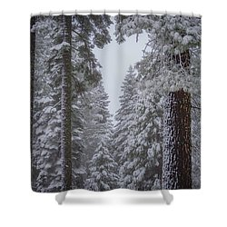 For The Love Of Snow Shower Curtain