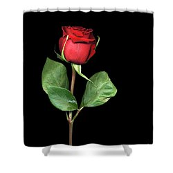 For You My Darling With Love Shower Curtain