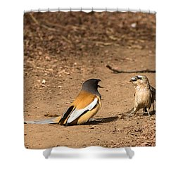 Forceful - Face Off  Shower Curtain by Ramabhadran Thirupattur