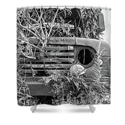 Ford Forgot In Nature Shower Curtain