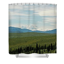 Foreground And Mountain Shower Curtain
