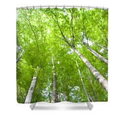Shower Curtain featuring the photograph Forest 1 by Jean Bernard Roussilhe