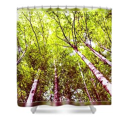 Shower Curtain featuring the photograph Forest 2 by Jean Bernard Roussilhe
