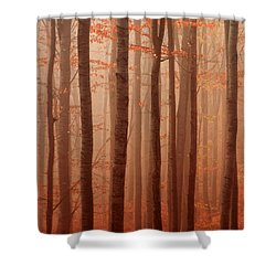 Forest Barcode Shower Curtain by Evgeni Dinev