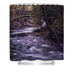 Forrest Bridge Shower Curtain