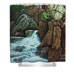 Forest Brook IIi Shower Curtain