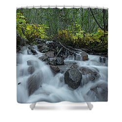 Forest Cascades Shower Curtain