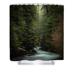 Shower Curtain featuring the photograph Forest Enchantment by Cat Connor