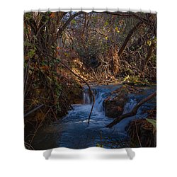 Forest Fairy Tail Shower Curtain