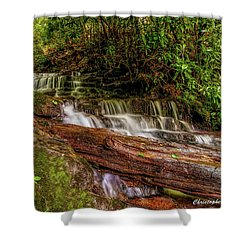 Shower Curtain featuring the photograph Forest Falls by Christopher Holmes