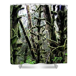 Forest Finery Shower Curtain by Will Borden