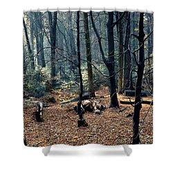 Fir Forest-1 Shower Curtain by Henryk Gorecki