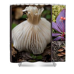 Forest Floor Shower Curtain by Lisa Knechtel