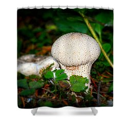 Forest Floor Mushroom Shower Curtain