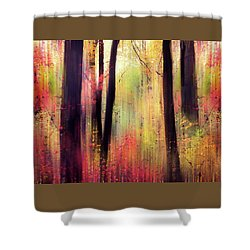 Shower Curtain featuring the photograph Forest Frolic by Jessica Jenney