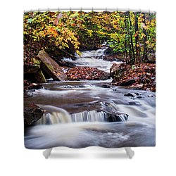 Shower Curtain featuring the photograph Forest Gem by Parker Cunningham
