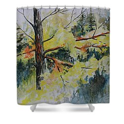 Shower Curtain featuring the painting Forest Giant by Joanne Smoley