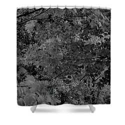 Forest Hut Shower Curtain