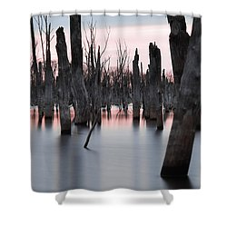 Forest In The Water Shower Curtain by Jennifer Ancker
