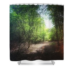 #forest #instagood #woods #trees Shower Curtain by Vicki Field