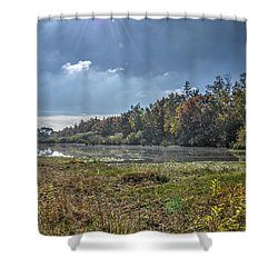 Forest Lake In Autumn Shower Curtain