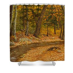 Shower Curtain featuring the painting Forest Life by Roena King