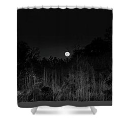 Forest Of The Wendigo Shower Curtain by Mark Andrew Thomas