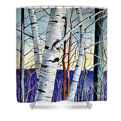 Forest Of Trees Shower Curtain