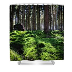 Forest Of Verdacy Shower Curtain