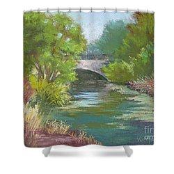Forest Park Bridge Shower Curtain