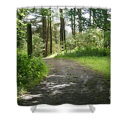 Forest Path. Shower Curtain
