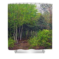 Forest Path Leading Into The Forest Shower Curtain