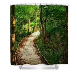 Shower Curtain featuring the photograph Forest Path by Nikki McInnes